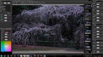RFCSil_001(FB),,F_2018yaotomi.jpg