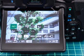 PXZ20874_17 mm(F2.3)iso200_2018yaotomi.jpg