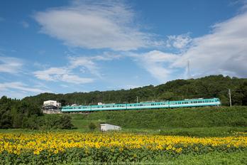 DSC_1654,2014yaotomi.jpg