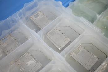 P1011383_45mmF2,8iso800,45 mm,F2.8,iso800.jpg