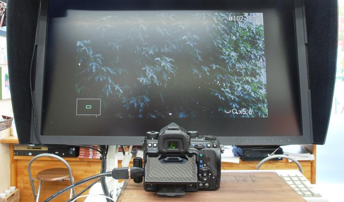 DSC_0009,24 mm,F7.1,iso400.jpg