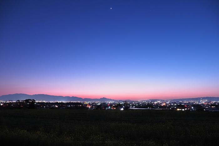 P2190465_2020yaotomi.jpg